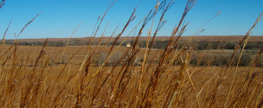 Flint Hills Autumn
